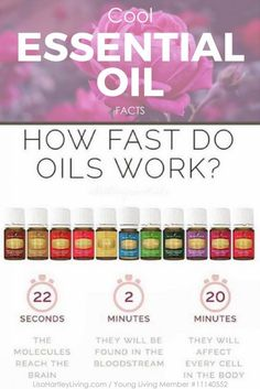 Cool Essential Oil Facts, facts about essential oils, types of essential oils, what are essential oils, how to use essential oils, young living, benefits of essential oils, healthy living, holistic health, essential oil recipes