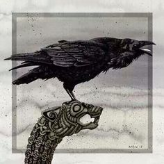 Viking crow