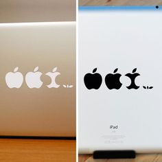 Evolution Of Apple 3 Pack || Decal For That