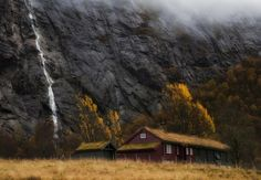 nature – 255 фотографий