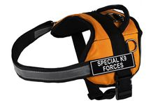 Dean and Tyler Works Special K9 Forces Pet Harness, X-Small, Fits Girth Size: 21 to 26-Inch, Orange/Black * Click image for more details. (This is an affiliate link and I receive a commission for the sales)