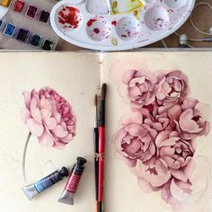 «Sketches. Roses || #limkina #limkina_art || Winsor and Newton, Sennelier watercolors, Kolinsky sable paintbrushes, Canson grain fin papers ||»