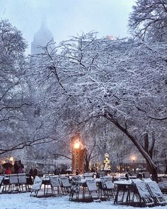 Madison Square Park by @nycinstantly by newyorkcityfeelings.com - The Best Photos and Videos of New York City including the Statue of Liberty Brooklyn Bridge Central Park Empire State Building Chrysler Building and other popular New York places and attractions.