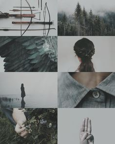 hunger games aesthetic | Tumblr Hunger Games Fandom, Hunger Games Trilogy, Katniss Everdeen, Narnia, Wedding Games, Catching Fire, Mockingjay, Aesthetic Collage, Film Serie