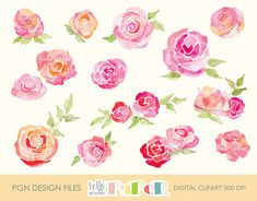 roses watercolor - digital image -  for photography, personal use and small business project