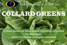 Collard greens are a #nutritious vegetable rich in #calcium and #vitamin and also low in #calories. #healthyliving #growstrong