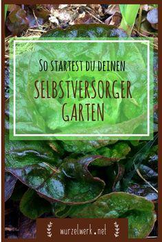 So startest du deinen Selbstversorger-Garten: Selbstversorger-Garten ganz einfach selber anlegen mit der Back To Eden-Methode. Nicht mehr umgraben, gießen und jäten. So gestaltest du deine Selbstversorgung möglichst einfach.
