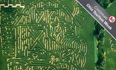 corn maze  Bellbrook, ohio