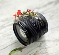 Best Food Photography Tips: A Food Blogger's Guide To Camera Lenses