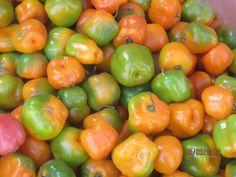 Chíles manzanos
