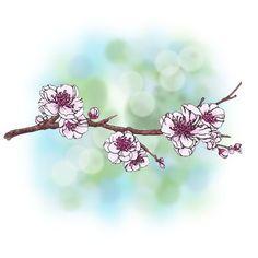 Blossoming Branch Digi Stamp in Digital images