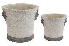 S/2 Cream Terracotta Planters, Large on OneKingsLane.com