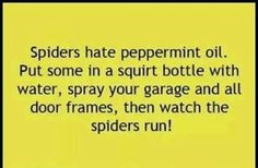 Bahahaha this is soooooo happening Simple Life Hacks, Useful Life Hacks, Daily Hacks, House Cleaning Tips, Cleaning Hacks, 1000 Lifehacks, Things To Know, Good Things, Insecticide