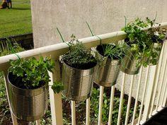 Life changing gardening hacks to try (22)