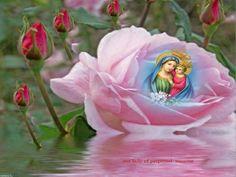 JEZUS en MARIA Groep.: MARIA MOEDER VAN ALTIJDDURENDE BIJSTAND NOVEEN.