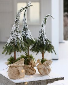 Fordi det begynner å nærme seg?, har jeg samlet litt jule inspirasjon som j… Because it is getting closer?, I have gathered some Christmas inspiration that I have created over the past few years. Little Christmas Trees, Natural Christmas, Rustic Christmas, Simple Christmas, Christmas Home, Christmas Holidays, White Christmas, Magical Christmas, Merry Christmas