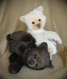 realistic artist teddybears | Realistic teddy bears: Karlo the Kermode bear (white) and black bear ...