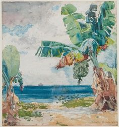 "Winslow Homer / ""Banana Tree - Nassau,"" 1885 / Des Moines Art Center Permanent Collection / Photo by Rich Sanders, Des Moines"