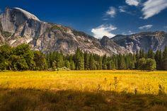 Yosemite National Park, El Capitain, Half Dome, California, USA  | The Planet D
