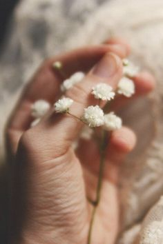 Image discovered by Leonardo. Find images and videos about cute, beautiful and photography on We Heart It - the app to get lost in what you love. Bright Stars, Flower Power, Beautiful Pictures, Bloom, Delicate, In This Moment, Pure Products, Thoughts, Words