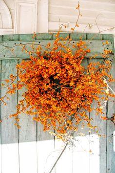 Gorgeous Autumn Bittersweet Wreath