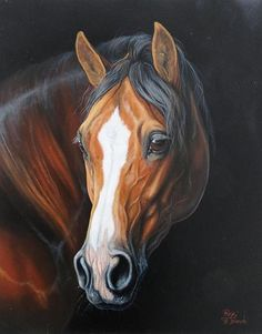 Horse painting by Roberto Bianchi More