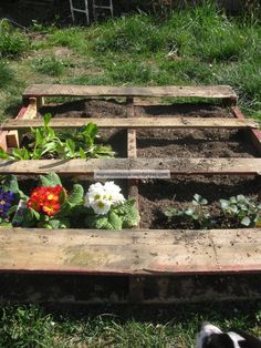 Garden Pallet Planter Tutorial from Mermaid Dance for leaving the pallet on the ground.
