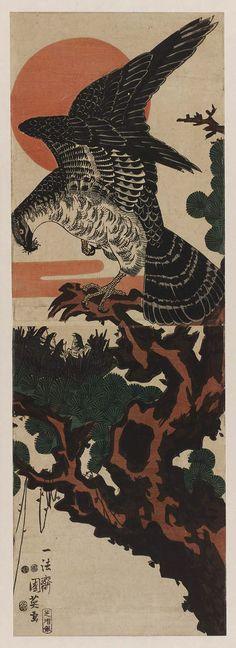 Hawk's Nest 鷹の巣  Japanese Edo period 1852 (Kaei 5), intercalary 2nd month Artist Utagawa Kunihide