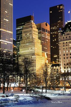 New York City Manhattan Central Park panorama ~ Snowfall.