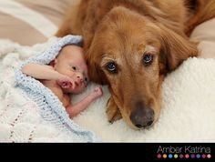 Baby and Dog. A picture like this after we have her could be cute too.