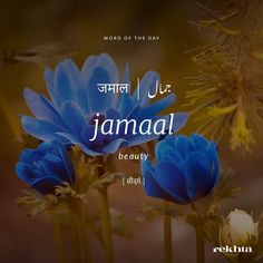 Word of the day Urdu Words With Meaning, Hindi Words, Urdu Love Words, Unusual Words, Rare Words, Image Poetry, One Word Quotes, Poetic Words, Dictionary Words
