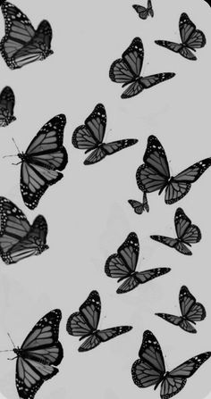 Black And White Wallpaper Iphone, Butterfly Wallpaper Iphone, Dark Wallpaper Iphone, Iphone Wallpaper Tumblr Aesthetic, Black Aesthetic Wallpaper, Iphone Background Wallpaper, Aesthetic Wallpapers, Aesthetic Black, Cute Black Wallpaper