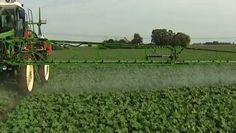 Du poison, oui, mais pas de façon trop voyante ?... http://www.allodocteurs.fr/bien-etre-psycho/environnement-et-sante/pesticides/pesticides-alimentaires-bientot-une-limite-maximale-par-jour_20555.html?