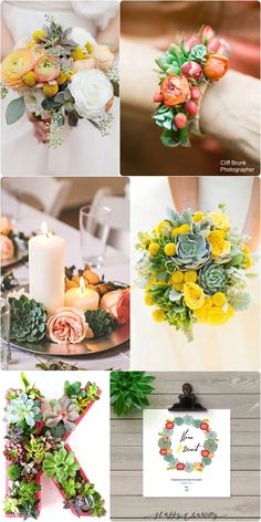moodboard-mariage-succulentes-wedding-succulents-4