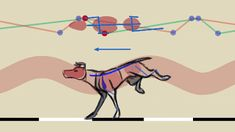 Quadruped Locomotion Tutorial - 滑らかアニメーション作品でお馴染みFelix Sputnik氏による「4足歩行」アニメーションチュートリアル! Animation Stop Motion, Animation Reference, 3d Animation, Art Reference, Creature Drawings, Animation Tutorial, Cool Animations, Art Tutorials, Pixel Art