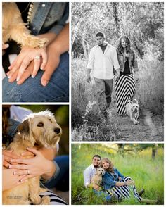 Engagement Session with pet dog Miss Bailey!
