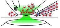 Optogenetics without the genetics