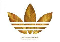 adidas organics fall collection.  www.robertsharpassociates.com - Creative Solutions by Sharp Minds.