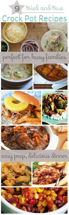 9 Awesome Crock Pot / Slow Cooker Recipes for busy families