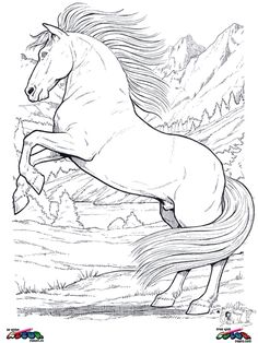 130 Best HORSES COLORING PAGES images | Coloring books, Coloring ...
