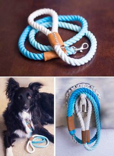 DIY Dog Crafts Man's Best Friend Will Love