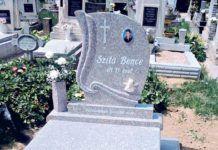 8. éve, hogy nincs köztünk Szita Bence, kegyetlen gyilkosai közül már egy sincs életben Akita, Evo, Bottle Opener, Barware, Marvel, Wall, Walls, Tumbler