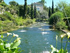 Ah to be near cooling water, like the 'canal' at les Jardins de Sardy, near Castillon-la-Bataille at the western edge of the Dordogne.