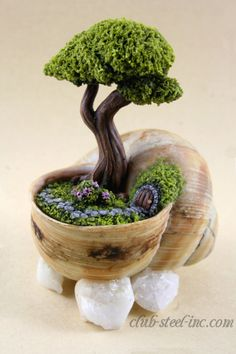spanktb:    this miniature garden in an apple snail shell was a mothers day gift underneath there are a few stones to keep it from tipping. The garden itself is completely handmade from FIMO