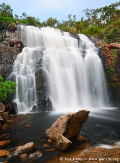 MacKenzie Falls, Grampians National Park (Gariwerd), Victoria - The Mackenzie Falls is one of Victoria's largest and most majestic waterfall. The MacKenzie Falls should be on everyone's shortlist of must see attractions in the Grampians National Park. Beautiful Waterfalls, Beautiful Landscapes, Chutes Victoria, Beautiful World, Beautiful Places, Australia Travel, Vic Australia, Victoria Australia, Australia Tours