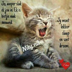 Good Night Wishes, Good Night Sweet Dreams, Good Night Quotes, Good Night Sleep Tight, Goeie Nag, Angel Prayers, Afrikaans Quotes, Nighty Night, Special Quotes