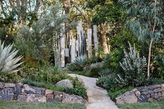 I See Wild | Phillip Withers Landscape Design