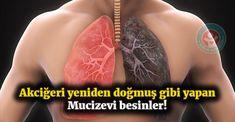 İşte akciğerinizi temizleyen ve mutfağınıza mutlaka girmesi gereken mucizevi besinler.. #sağlık #sağlıkhaberleri #health #news #akciğer