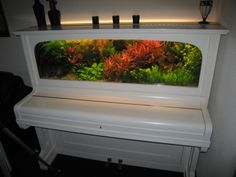 Aquarium of the piano. 15 brilliant ideas for reusing old things