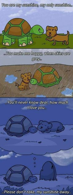 Memes - Tortoise - You are my sunshine, my only sunshine.You make me happy, when skies are greyo.You'll never know dear, how much 1 love you. Please don't take, my sunshine away.